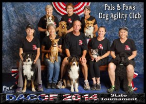 DACOF 2014 Pals and Paws Team 3